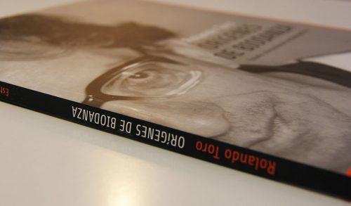 libro-rolando-toro-perspectiva